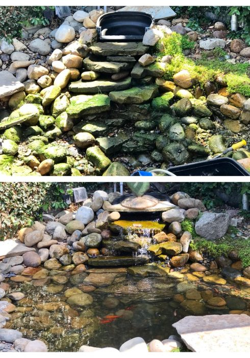 Pond-Cleanout-112.jpg