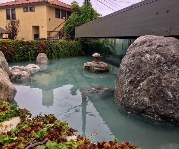 Pond-Mid-Century