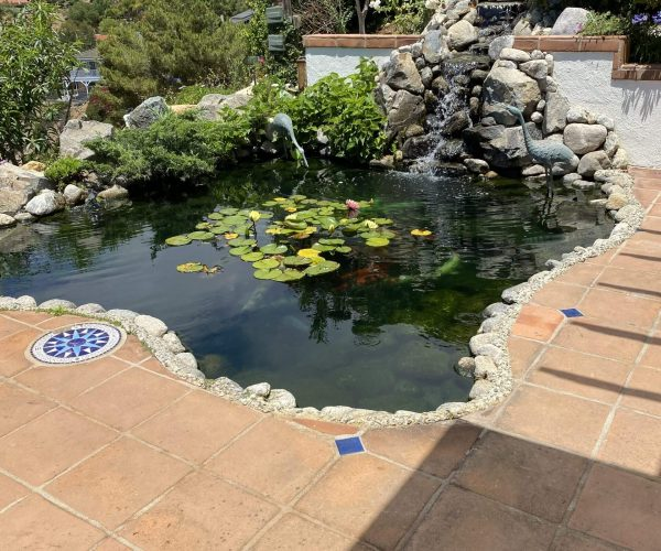 Pond-Rancho-Palos-Verde-77