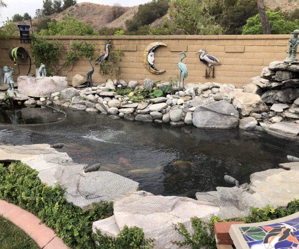 Pond-Southern-Cali.jpg