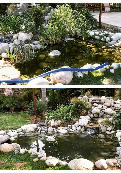 pond-before-after-15