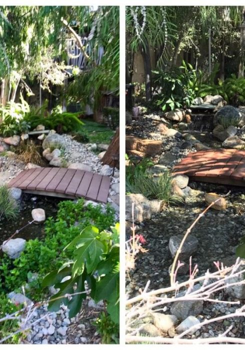 pond-before-after-16